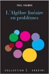 L'algèbre linéaire en problèmes